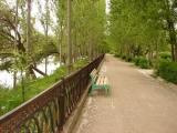 Санаторий Ботаника