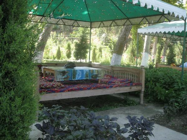 санаторий узбекистана город янгиюль